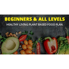 Healthy Living Daily Plan